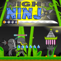 Become a Ninja to combat crime in the dark of night.